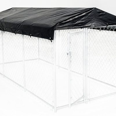 CL00302-ON-KENNEL