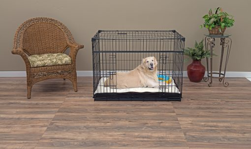 Large Dog in Crate